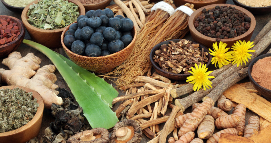 Adaptogen food collection with herbs, spices, fruit,flowers and supplement powders. Used in herbal medicine to help the body resist the damaging effect of stress and restore normal physiological functioning.