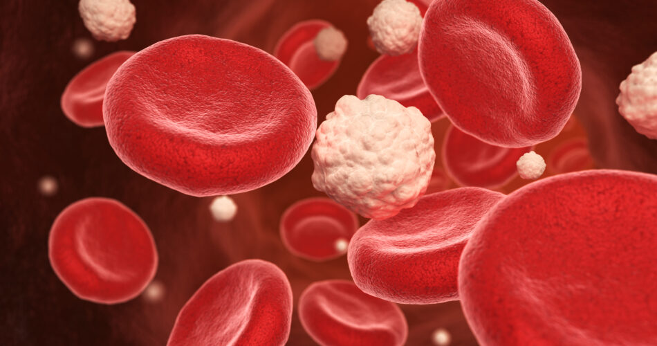 Blood cells and glucose in the vein. 3D illustration
