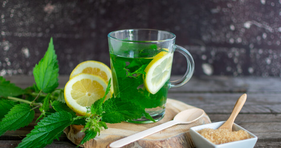 Fresh nettle tea with lemon on a wooden board with brown sugar