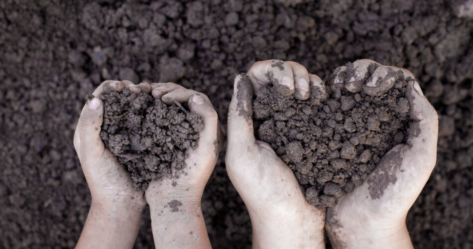 Parent and child hand holding soil in heart shape for planting together