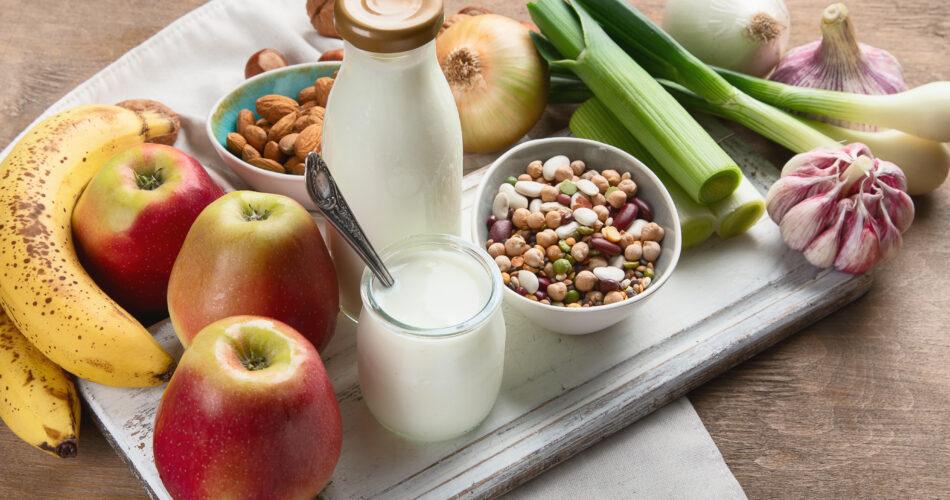 Probiotic rich foods. Healthy diet eating
