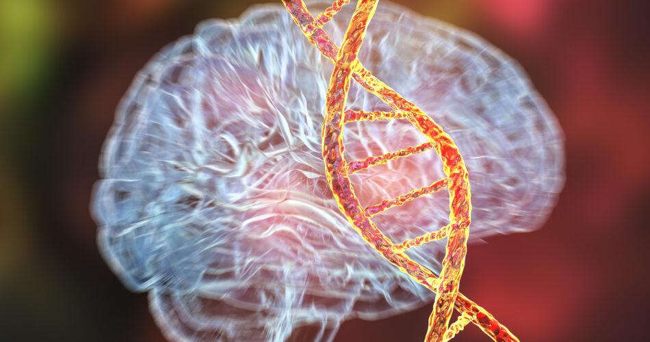 Trastornos genéticos del cerebro, ilustración conceptual en 3D. Mutaciones en el ADN que provocan enfermedades cerebrales. Neurogenética, trastornos neurodegenerativos