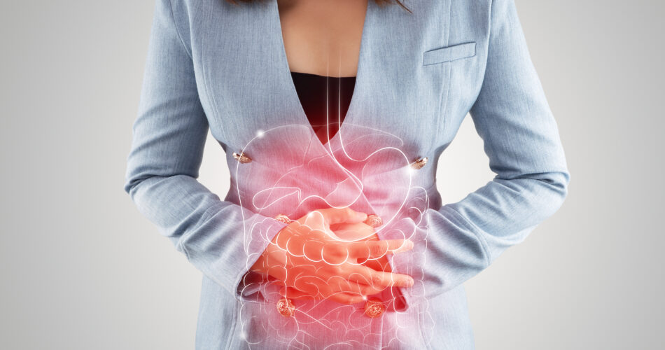 Illustration of internal organs is on the woman's body against the gray background. Business Woman touching stomach painful suffering from enteritis. internal organs of the human body.