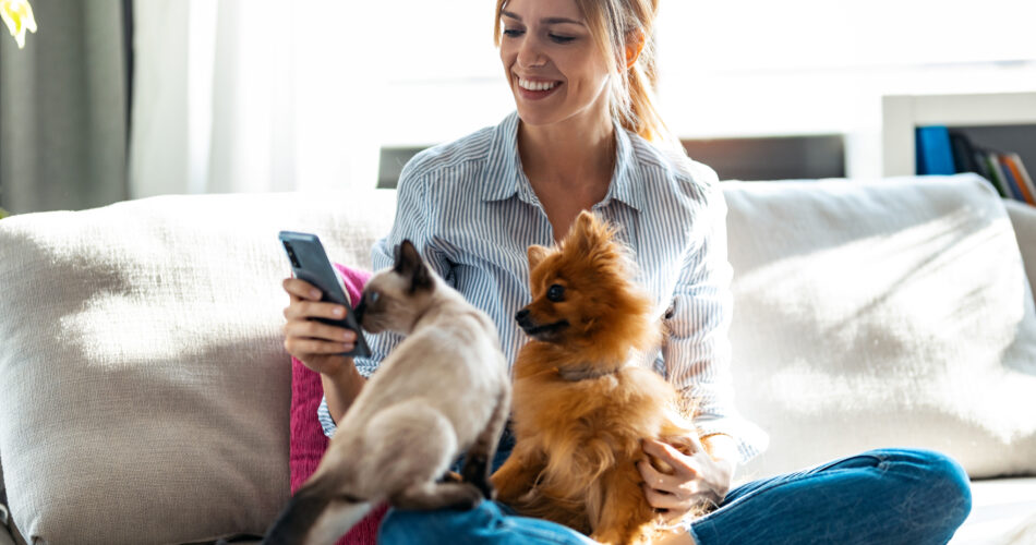 Shot of beautiful young woman playing with her cute dog and cat while using mobile phone sitting on couch in living room at home.