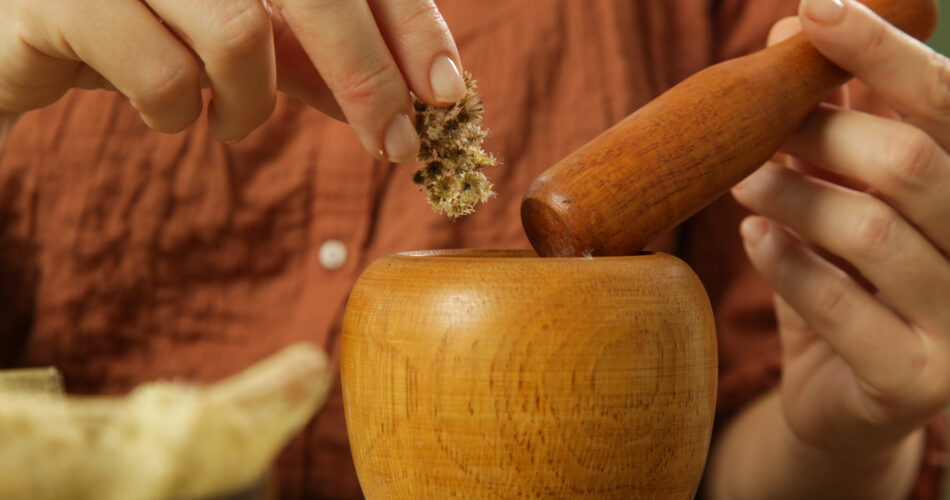 Woman preparing natural medicines with mortar and pestle. Process of making natural cosmetic or herbal infused oil.